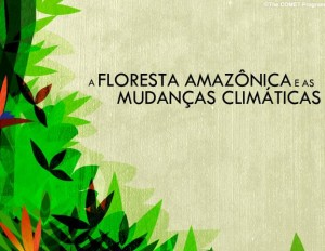 A Floresta Amazônica e as Mudanças Climáticas