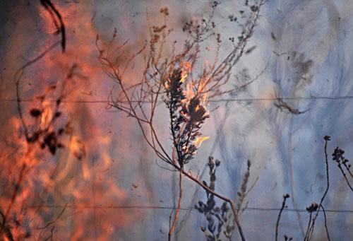 Agência Brasil: incêndio em Brasília