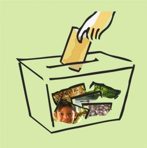 forum amazonia sustentavel eleições 2010