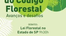 3 anos de Código Florestal